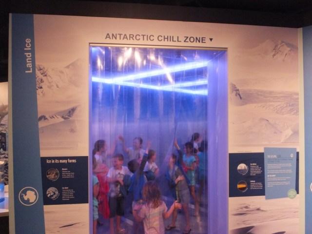 Antarctic Chill Zone!