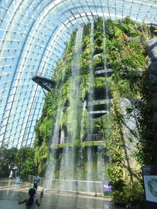 Cloud Forest - Garden by the Bay.