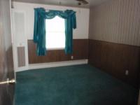 What Colors Go Good With Dark Green Carpet - Carpet Vidalondon
