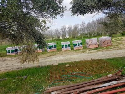 Poroton for Walls at new house construction site in Le Marche