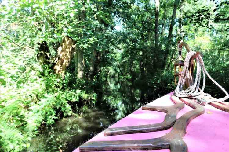 The BeWILDerwood boat ride