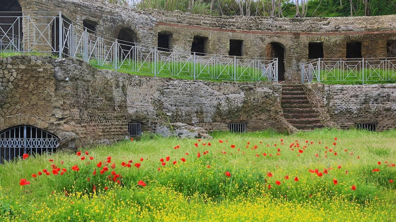 Poppies in Barcoli Ruin