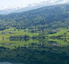 Mirror, mirror on the lake