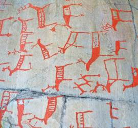 Mass collection of rock carvings