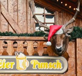 Home for Christmas via German Wine Land & Christmas Markets