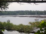 Maple Juice Cove from cemetery