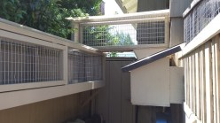 Catio entry box and catwalk