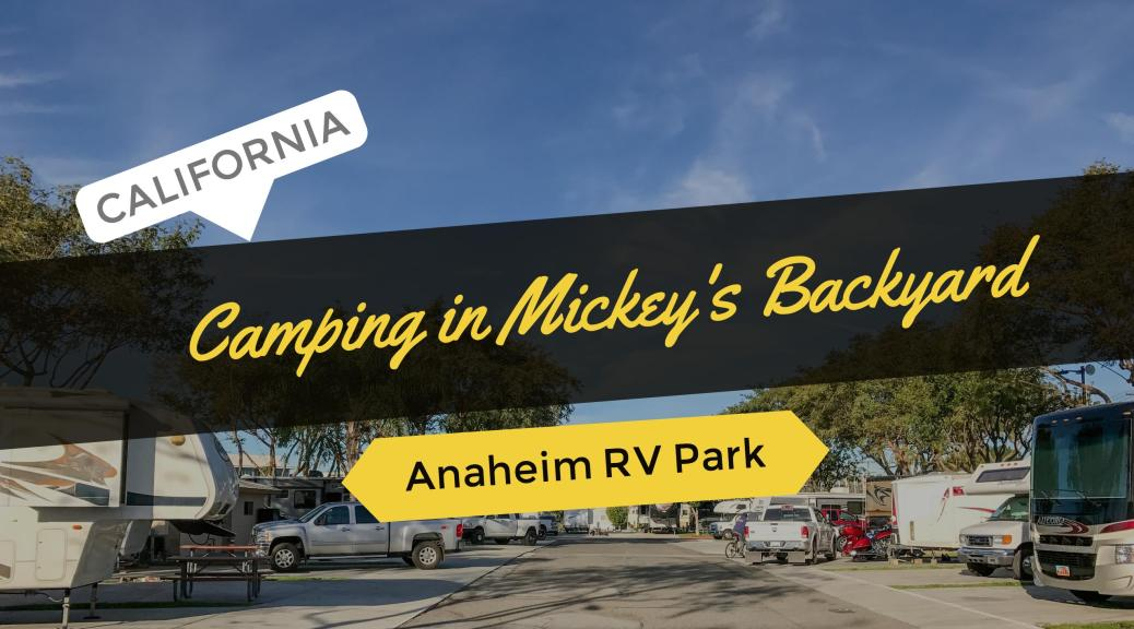 the brawl in mickeys backyard disney in anaheim Anaheim rv park on camp california | camping in mickey's backyard has never been better we are a family and pet friendly park close to everything oc has to.
