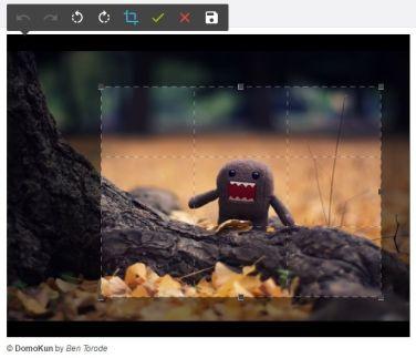 DarkroomJS image cropping plugin