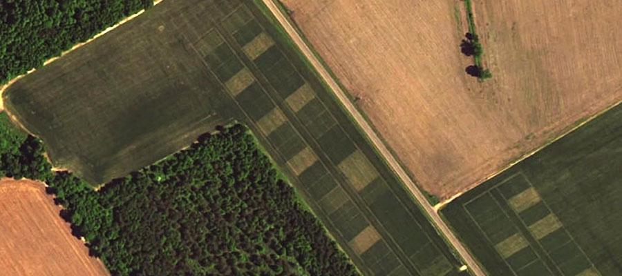 soil-study-field