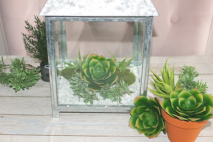 How To Make A Beautiful Succulent Terrarium Centsible Chateau #succulentterrarium #succulentlantern #terrarium