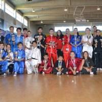Artai triunfador del Campeonato Ibérico de Kungfu Moderno