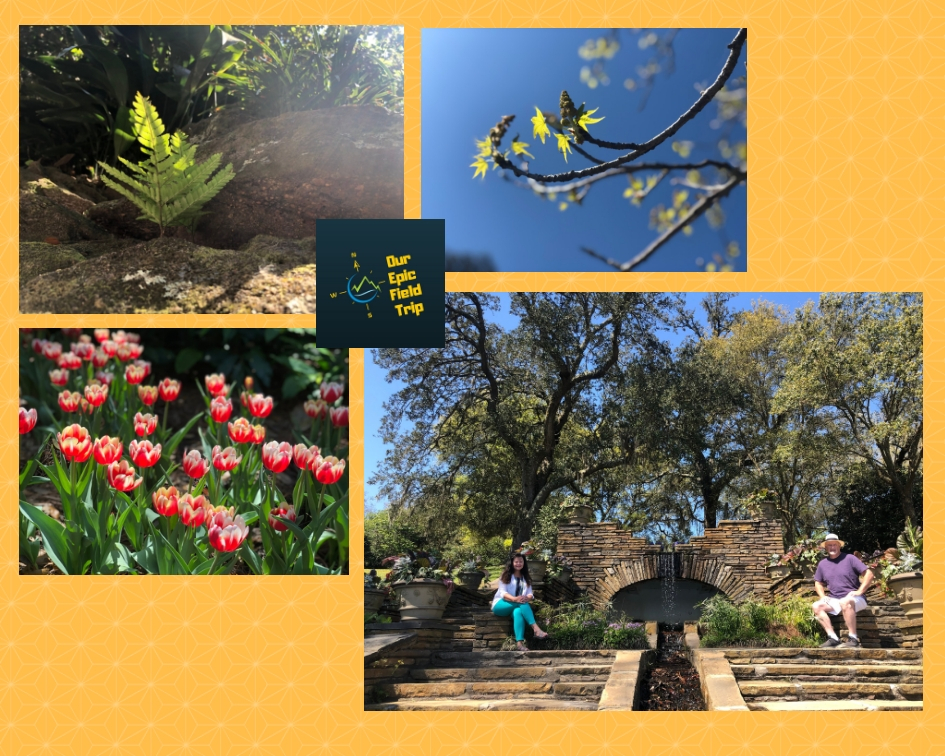 Belgrath Gardens