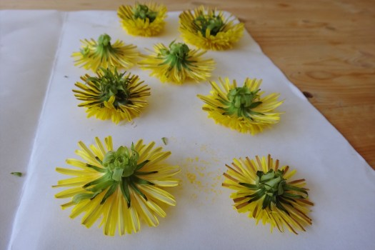 DIY Nature Inspired Dandelion Mobile (4)