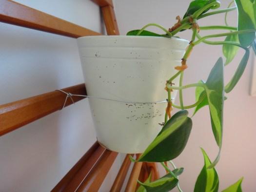 DIY Plant Hanger with Repurposed Baby Gates (9)