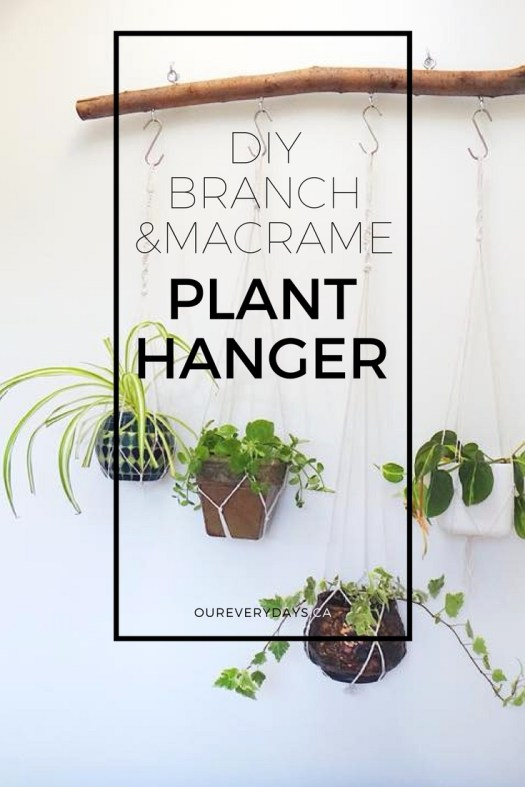 DIY Branch Macrame Plant Hanger