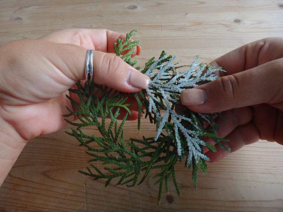 Mini Pine Branch Christmas Wreaths DIY Craft (9)