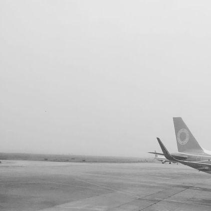 zyxzjs: fly 飞 (160830)