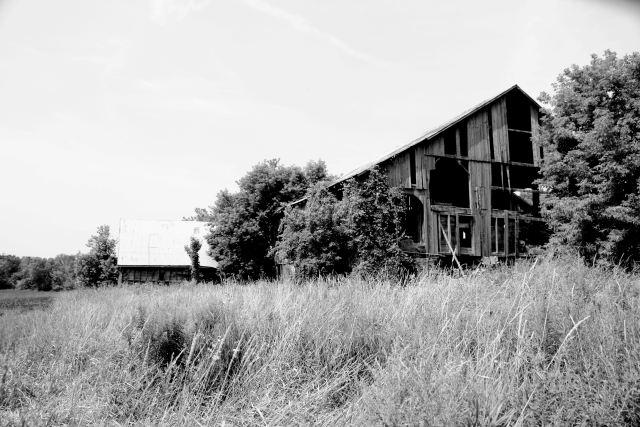 Old damaged barn