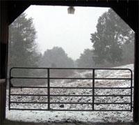 Snow through the barn