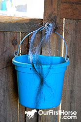 Tail hair caught on a bucket