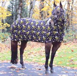 Goofy horse blanket