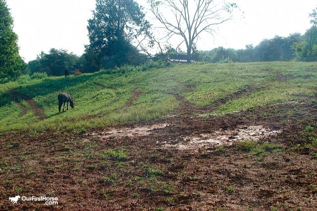 Mystery pasture flat spot