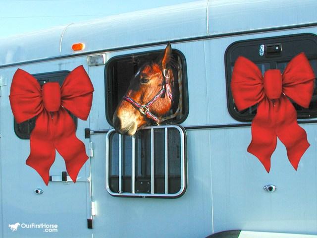 Horse as Christmas present