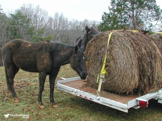 Round bale on trailer