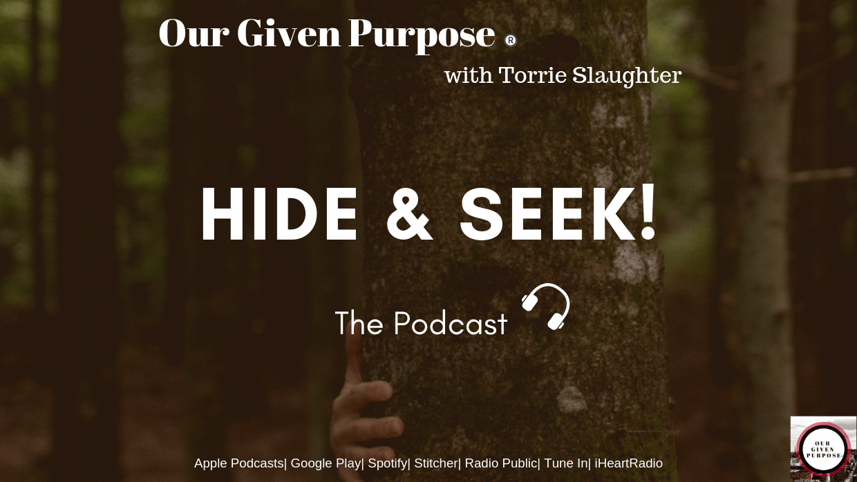 Hide & Seek, The Podcast
