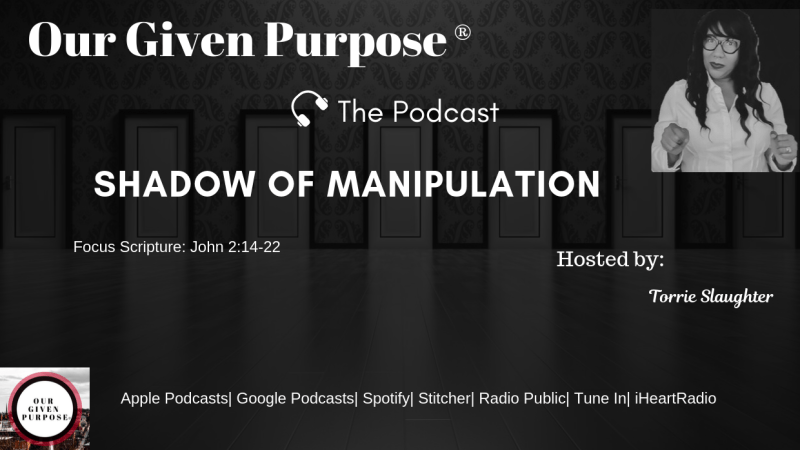 Shadow of Manipulation, The Podcast