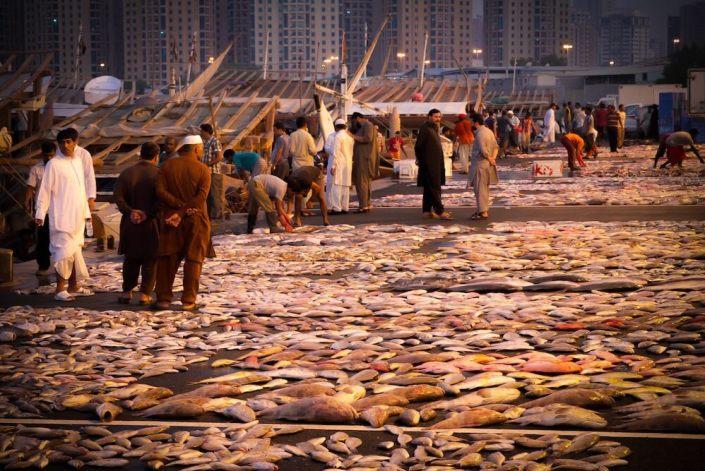 Ajman Fish Market (Photo Credit Filipina Expat)
