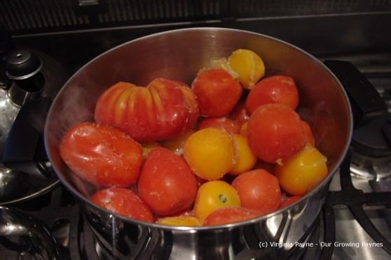 tomato sauce 2 2013