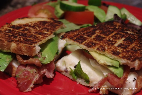 grilled tomato avocado cheese 5 2013