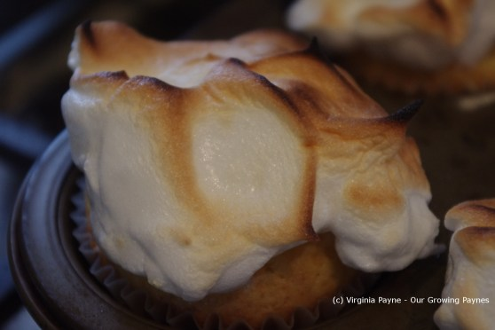 Lemon meringue muffins 20 2013