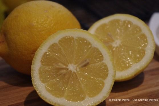 Lemon meringue muffins 8 2013