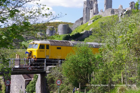 train 4 2013