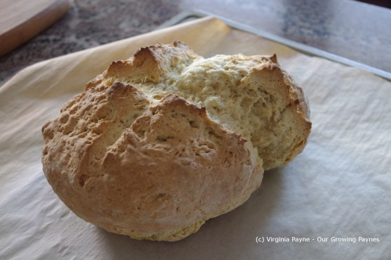 White soda bread 6 2013
