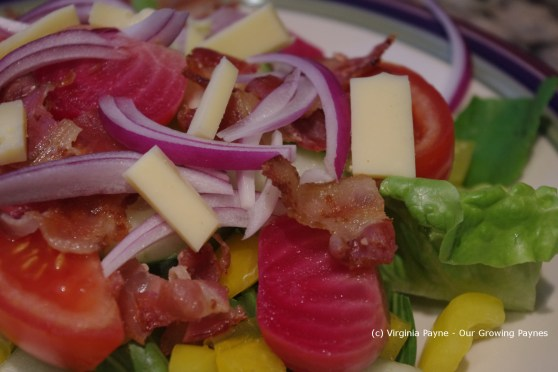 Bacon salad 4 2013