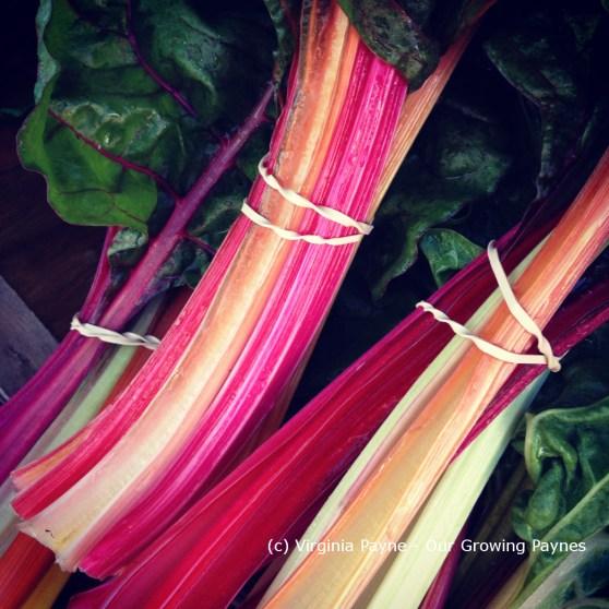 Farmers market 2 2013