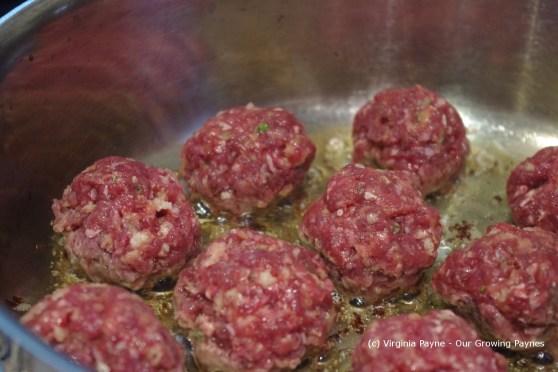 Meatball 4 2013
