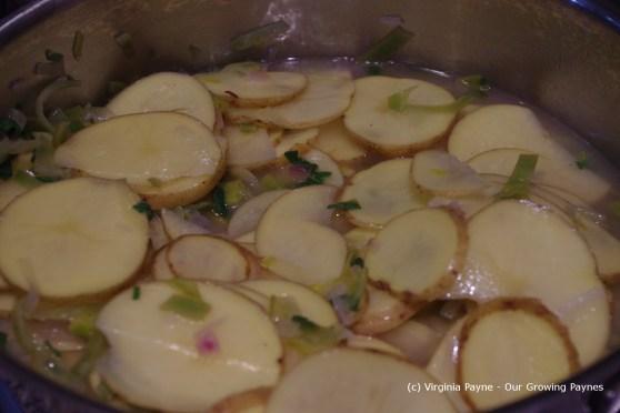 Pommes boulangere 5 2013