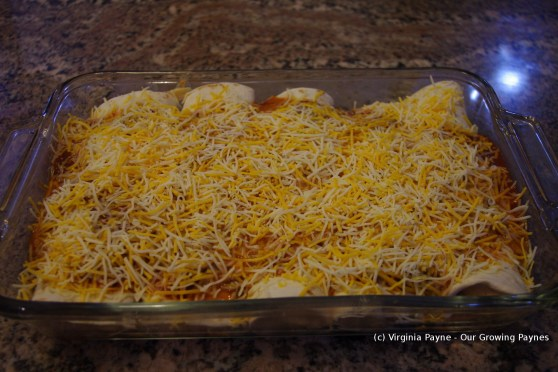 Chicken enchiladas 9 2014