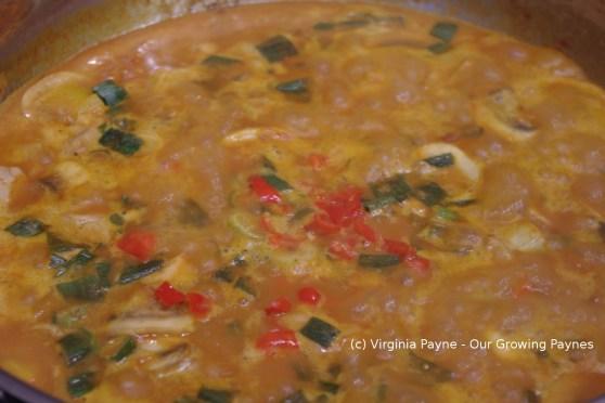 Spicy thai chicken curry 4 2014