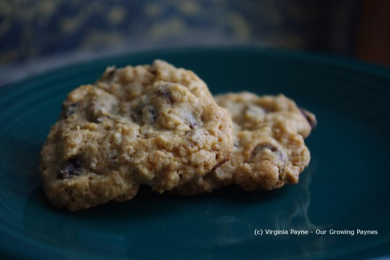 Oatmeal cookies 5 2014