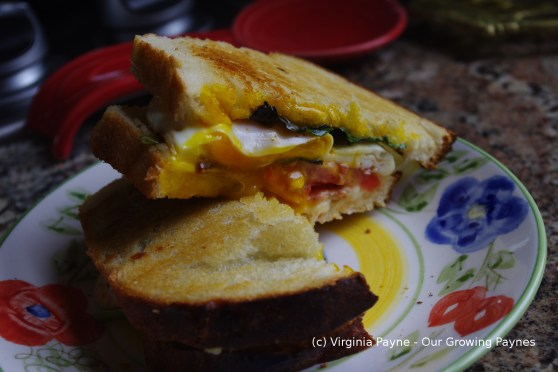 BLT Grilled Cheese 4 2014