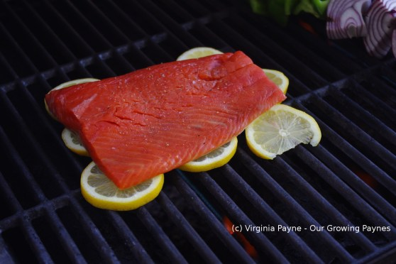 Grilled salmon 6 2014