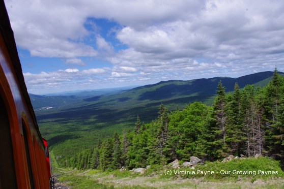 Mt Washington 5 2014