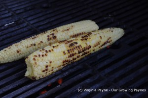 Mexican street corn 2 2014
