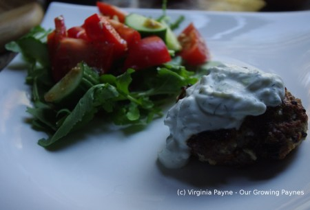 Greek lamb burgers 4 2015